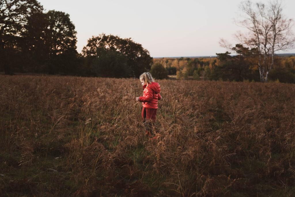 Familienfotografie in der Wahner Heide, Natürliche und authentische Familienfotografie Kinderfotografie, NRW, Köln, Bonn, Hennef